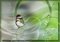 les 113 Verdronken vlinder