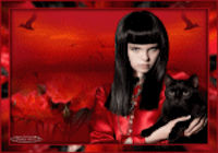 les 35 Black Cat