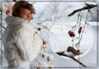 les 47 Winter wondeland