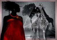 les 55 Giraffe