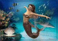 les 60 Sea live