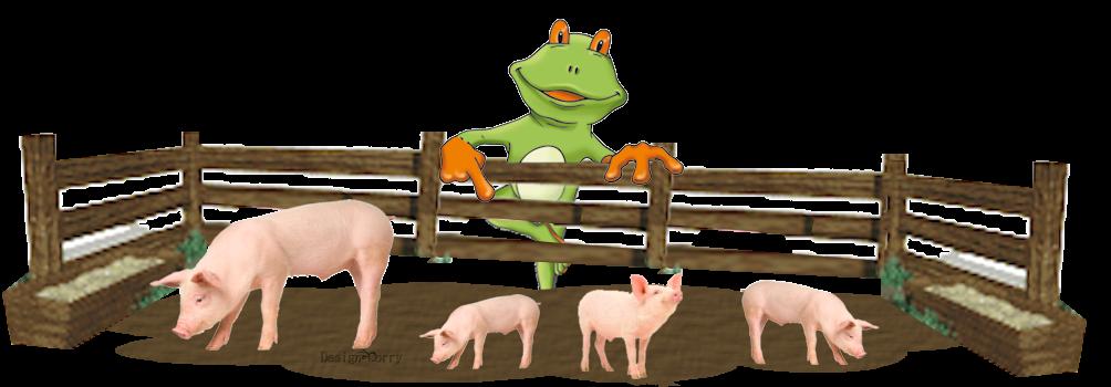 kirby-varkens